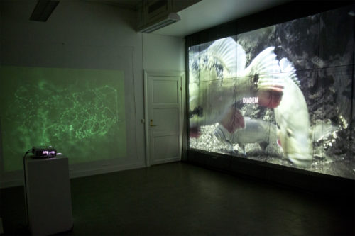 video projection on wall