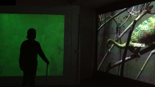 video projection with camälion